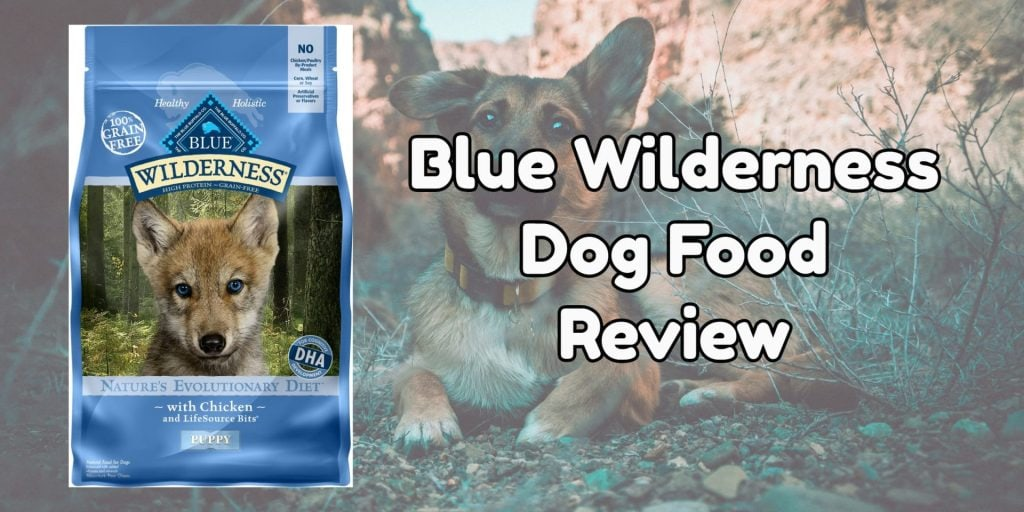 Blue Wilderness dog food review