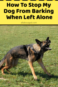 How To Stop My GSD From Barking When Left Alone