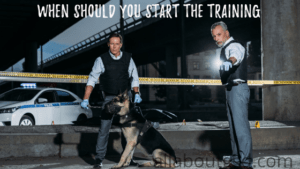 WHEN SHOULD YOU START THE TRAINING