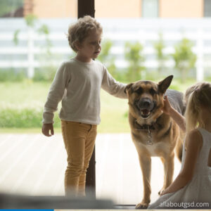 Are German shepherds safe for kids?