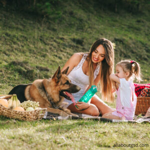 How To Introduce Your Baby To Your Dog?