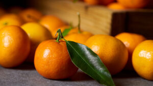 Can German Shepherds Eat Clementine?