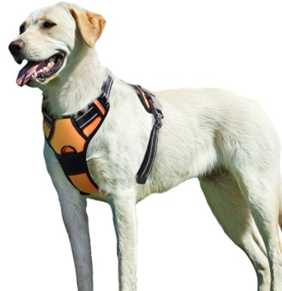 Best No Pull Dog Harness Eaglo Dog Harness No Pull Walking Pet Harness
